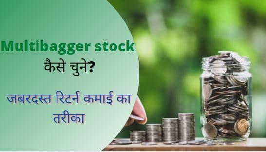 Multibagger-stock-कैसे-चुने-How-to-find-multibagger-stocks-in-Hindi